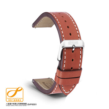 Citykeys 22 mm Brown Leather Octopus Strap